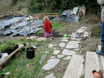 Garden during renovation