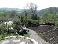 Renovated garden - pre planting