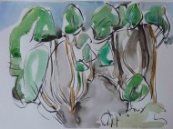 front-trees-ink-and-watercolour-38cm-x-56cm-march-20112